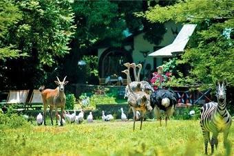 Mount Meru Game Lodge